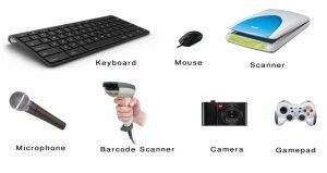 Perangkat Input (Input Devices)